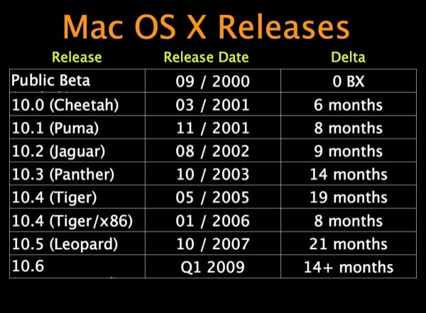 Apple: Snow Leopard release in Q1 2009