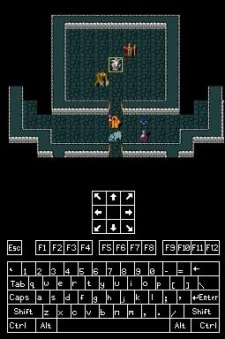 Nethack your DS