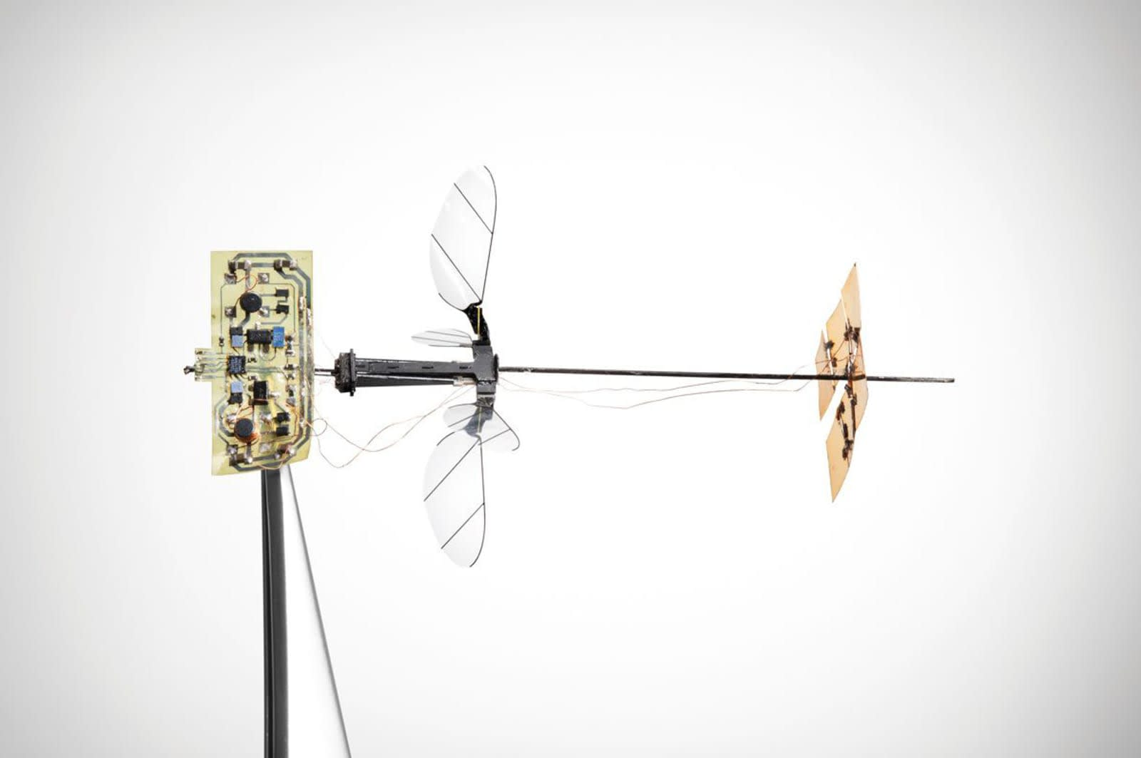 Harvard's RoboBee X-Wing can fly under its own power
