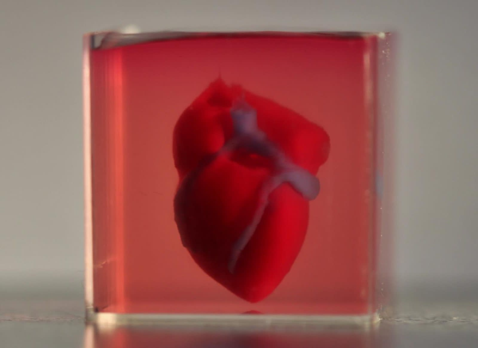 Scientists print first 3D heart using a patient's own cells