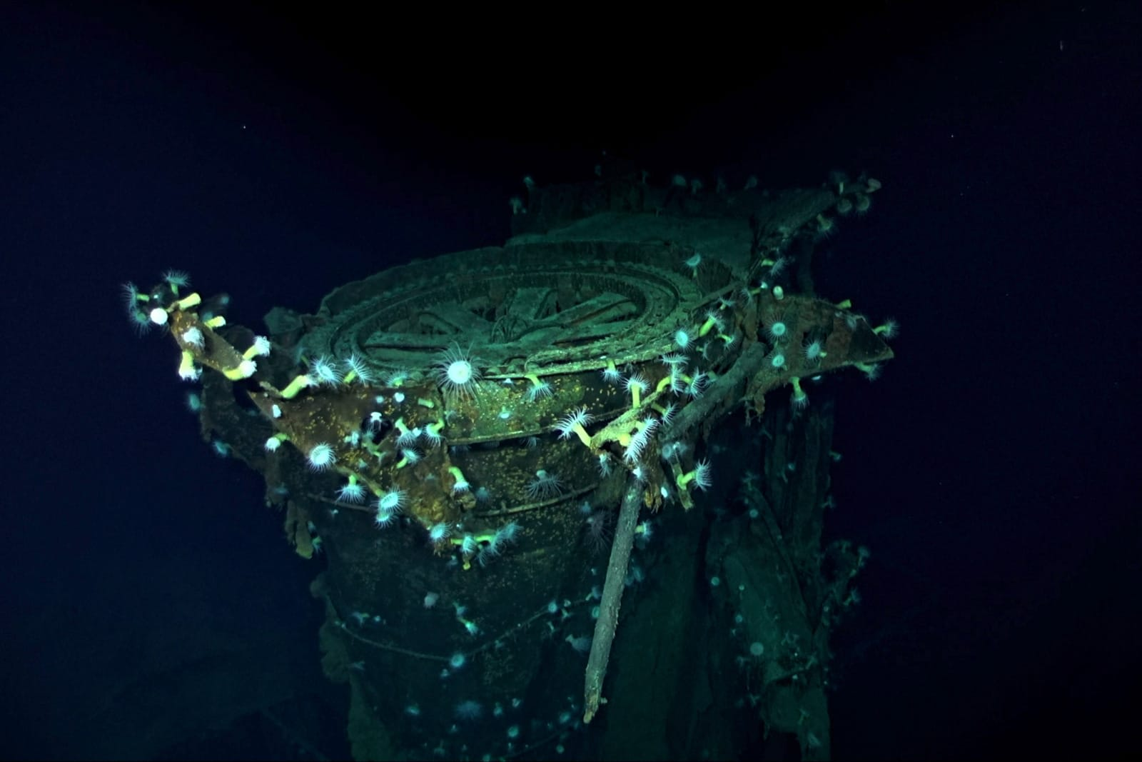 Sonar drone helps find a WWII Japanese aircraft carrier