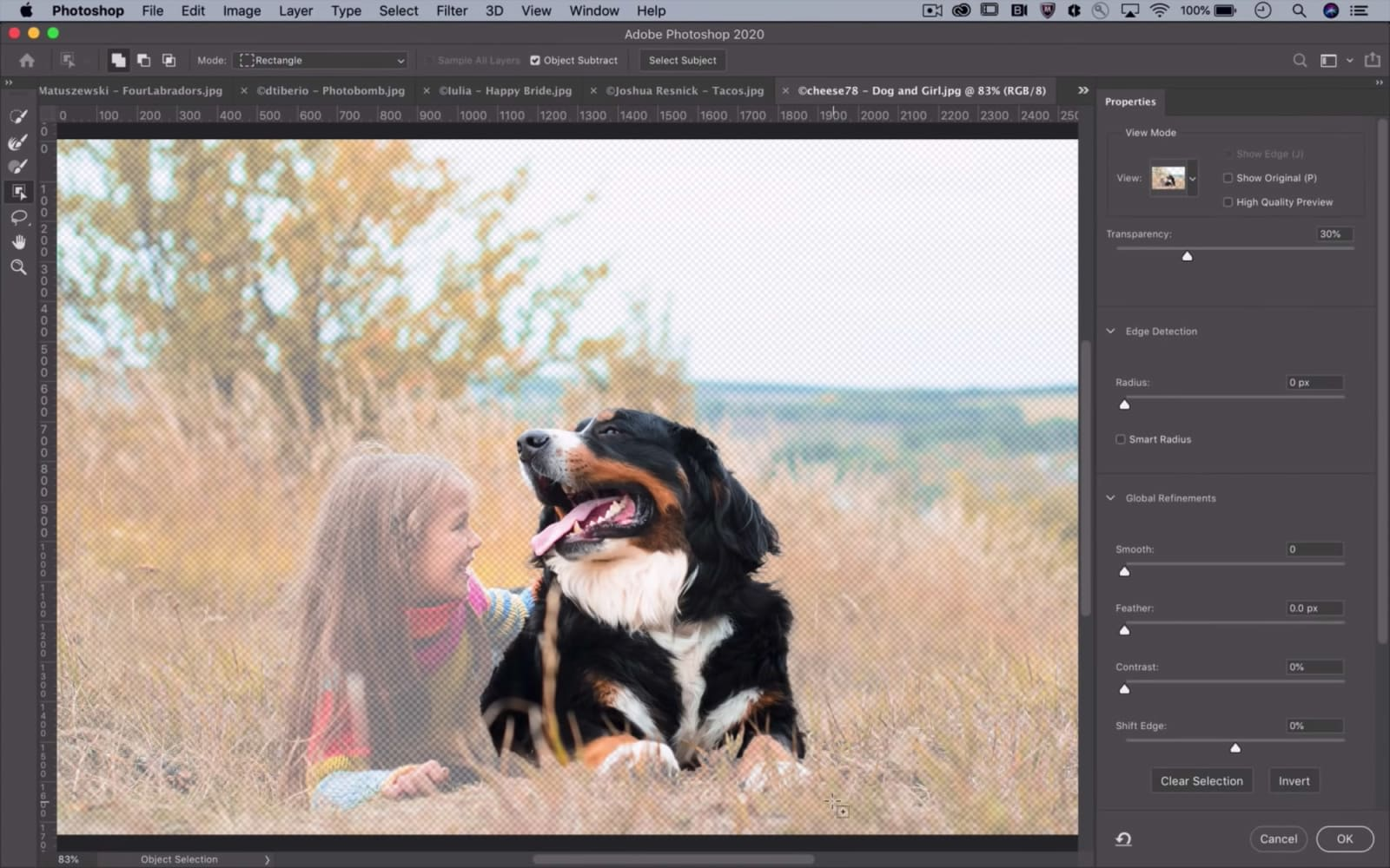 Adobe's advanced AI editing tools graduate to Creative Cloud apps