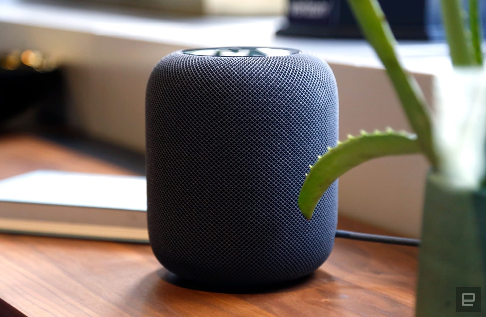 Apple is reportedly in talks to let Siri play Spotify tracks