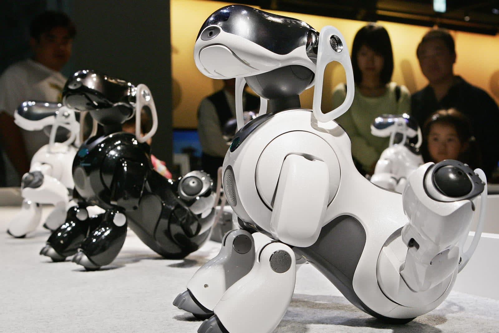 Sony's first robot in years will be an Aibo sequel