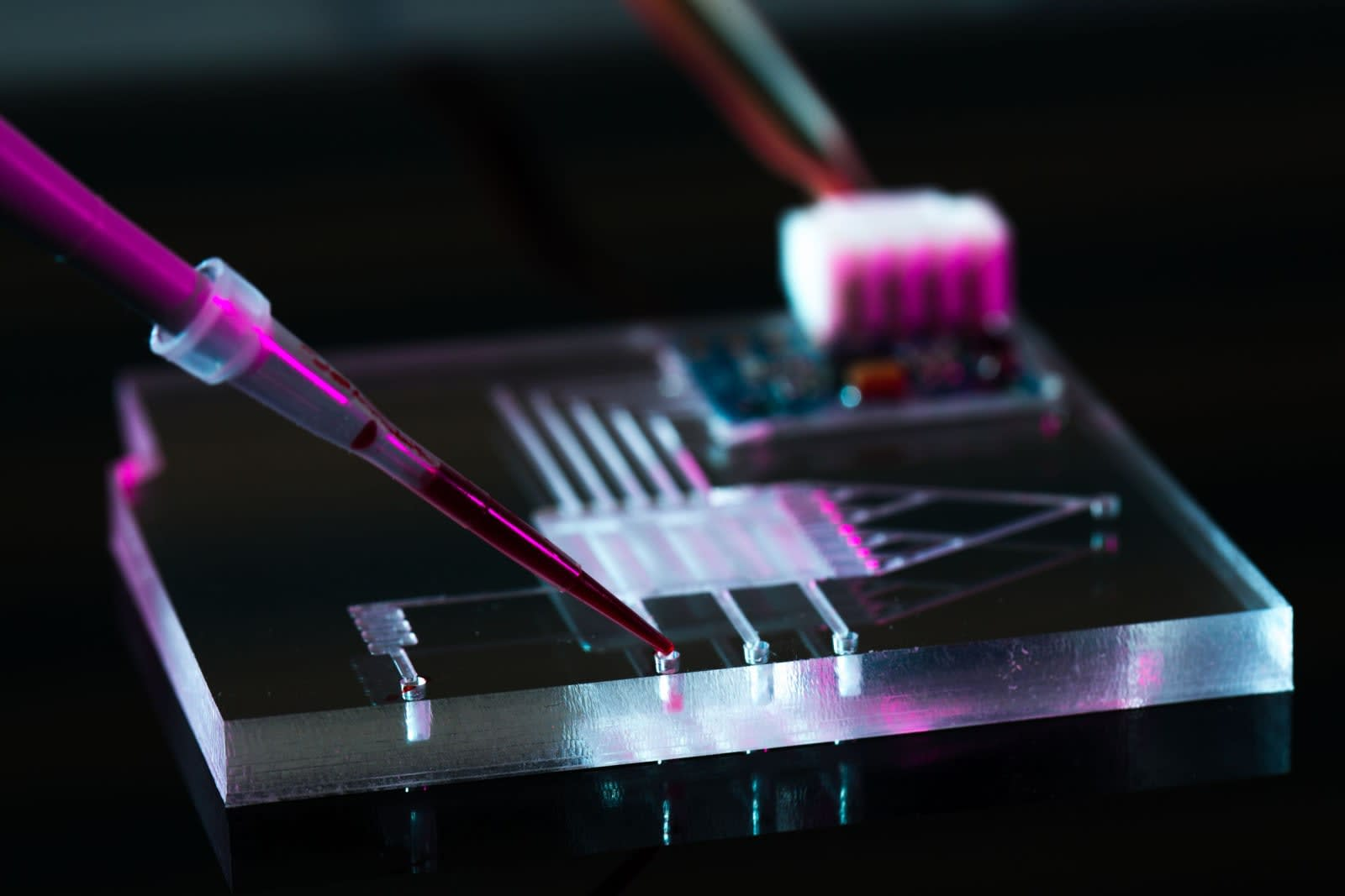 Self-healing 3D-printed gel has a future in robots and medicine