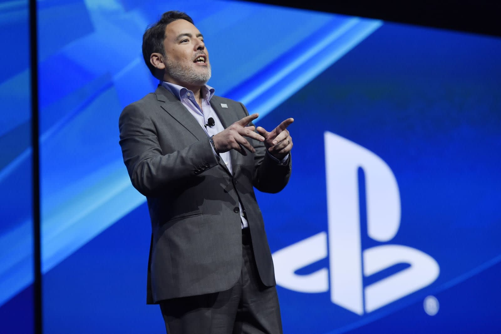 Image result for shawn layden