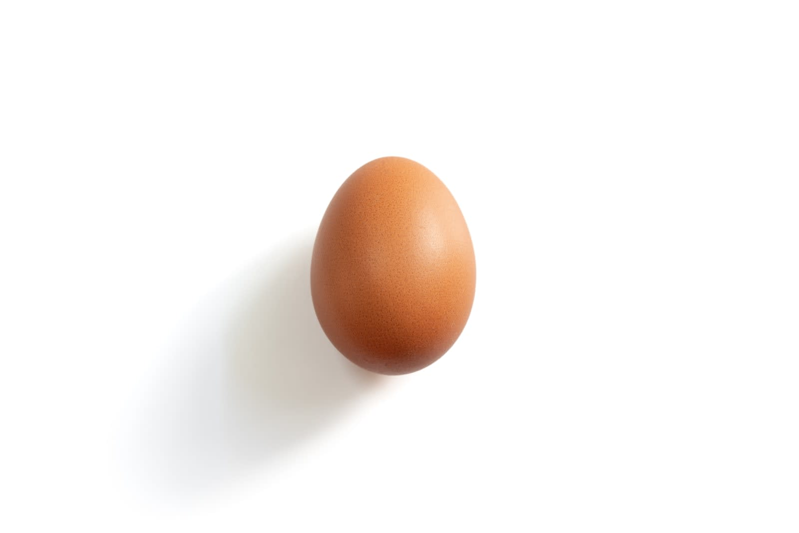 World Record Egg was one of the top tweets of 2019