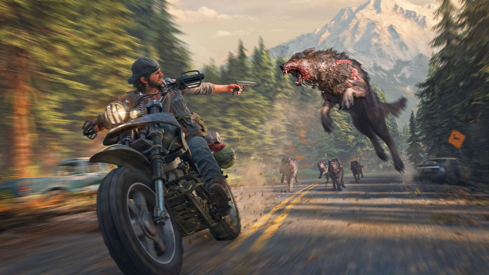 Image result for days gone photo mode