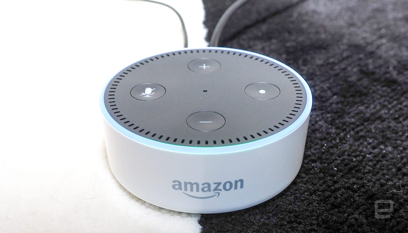 does echo dot work without alexa