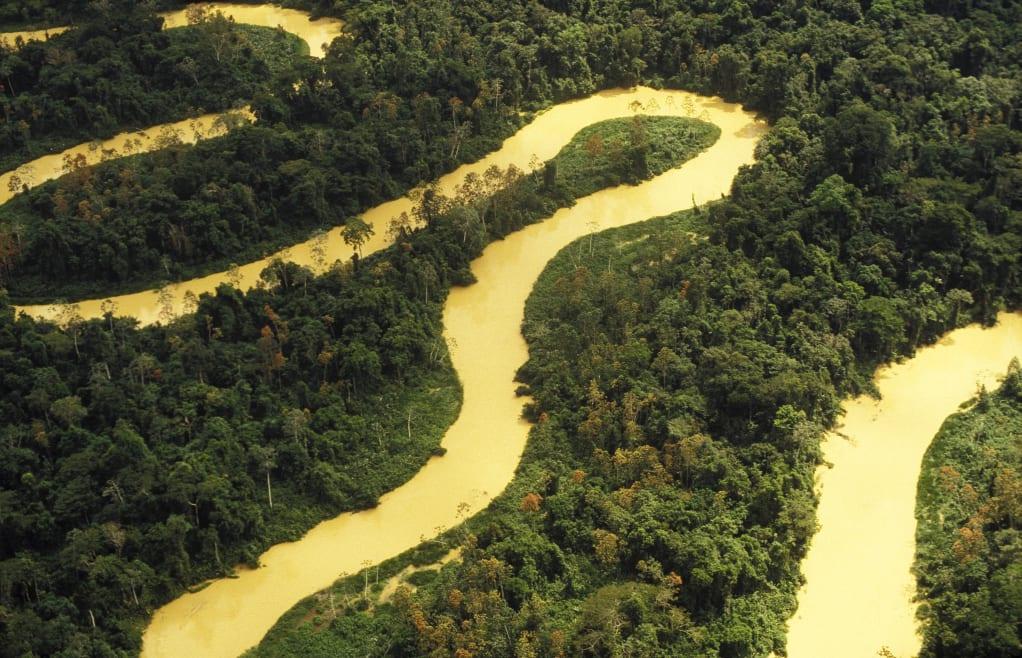 Objetivo: salvar el Amazonas