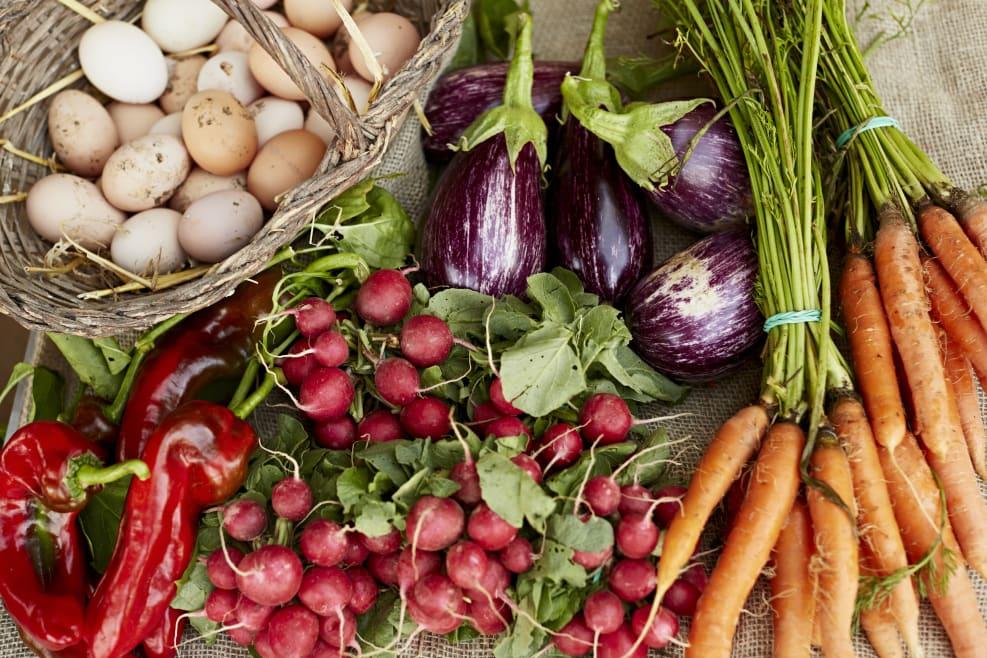 Valencia se convierte en la capital de la alimentación sostenible