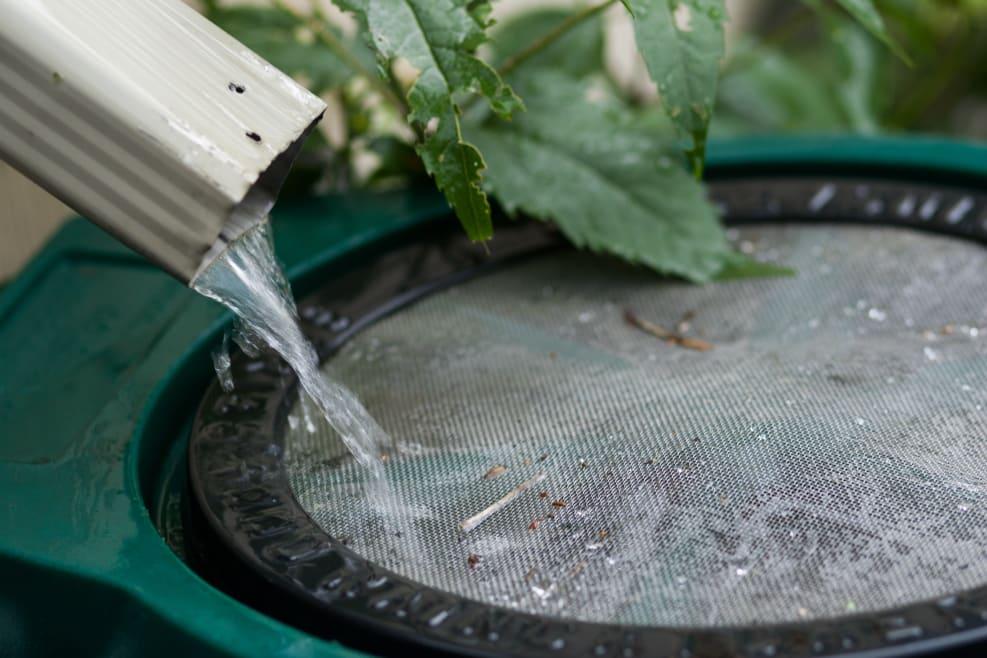 Cómo integrar la tecnología verde en casa