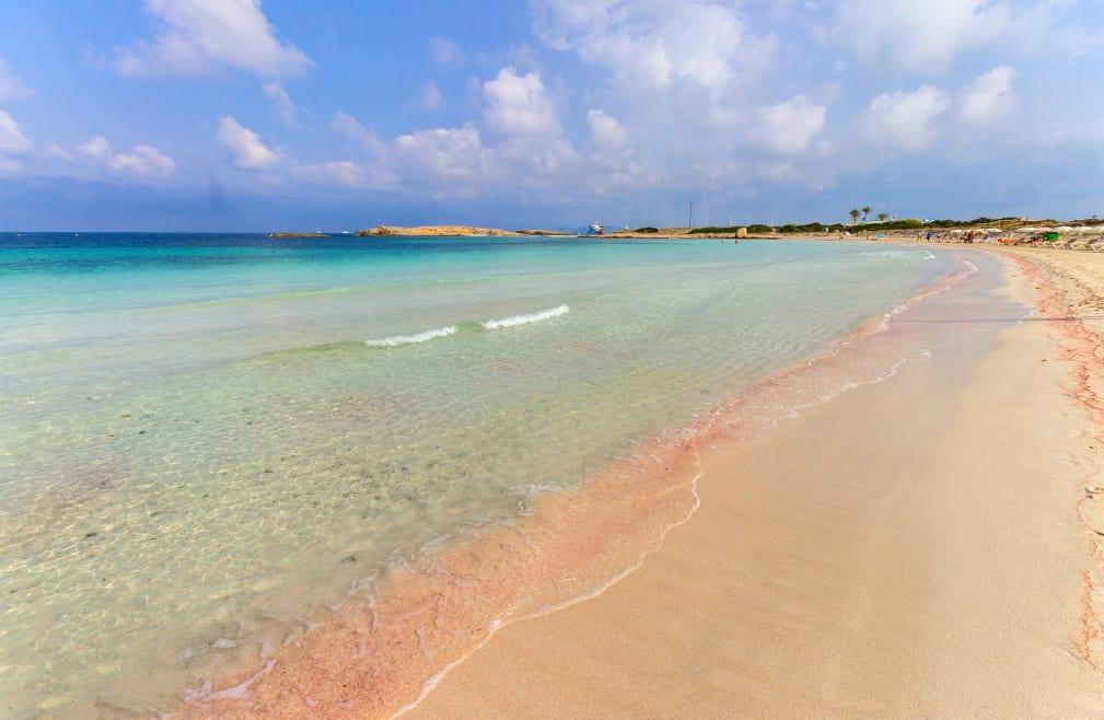 Este proyecto quiere recuperar la riqueza ambiental de Formentera