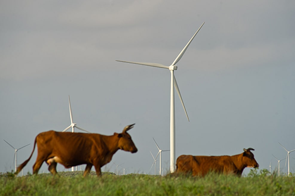 This Country Is Surprisingly Doing Well With Green Energy