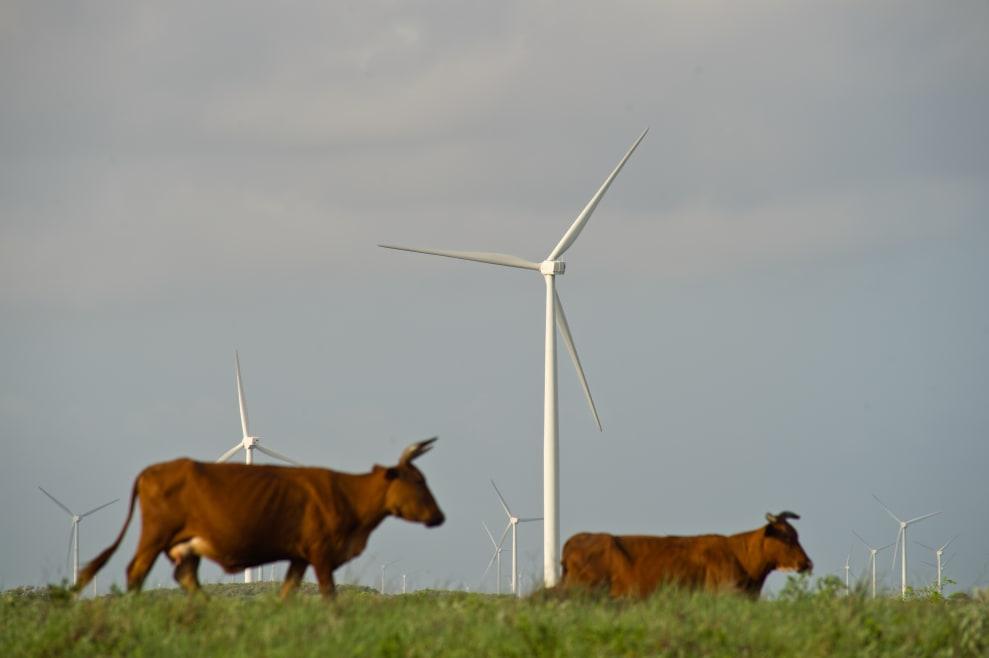 Este país lo está haciendo sorprendentemente bien con las energías renovables
