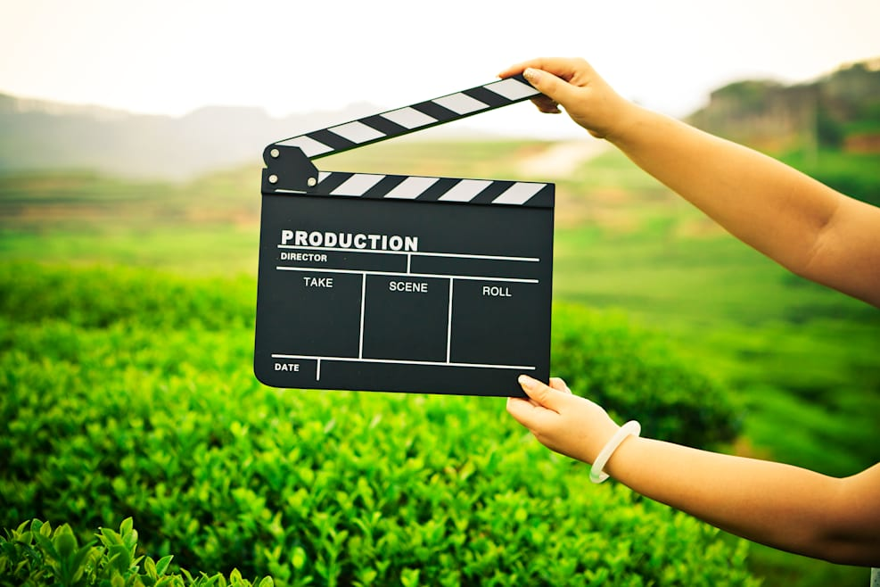 Action! Film And TV Hiring (Sustainability) Directors