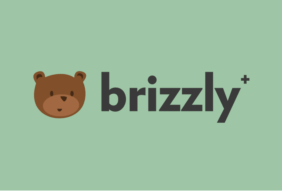 Twitter client Brizzly+ launches with 'undo' tweet feature 1