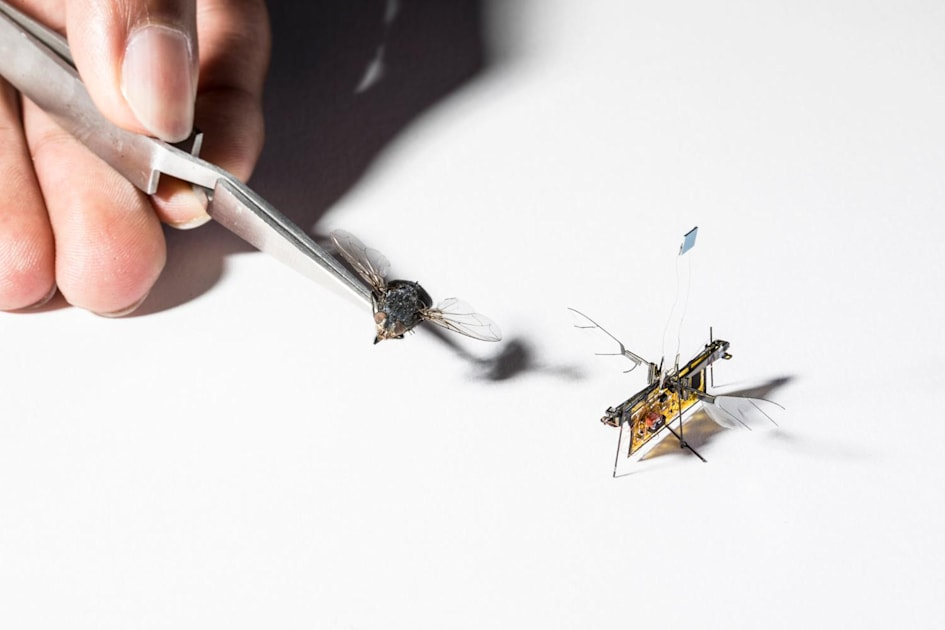 Robotic insect takes flight powered by frickin' laser beams