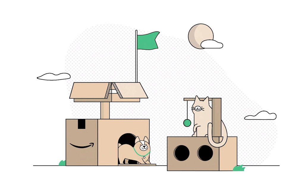 Amazon's new eco-friendly boxes can be turned into forts and 'cat condos'