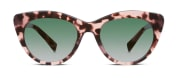 Warby Parker Tilley sunglasses