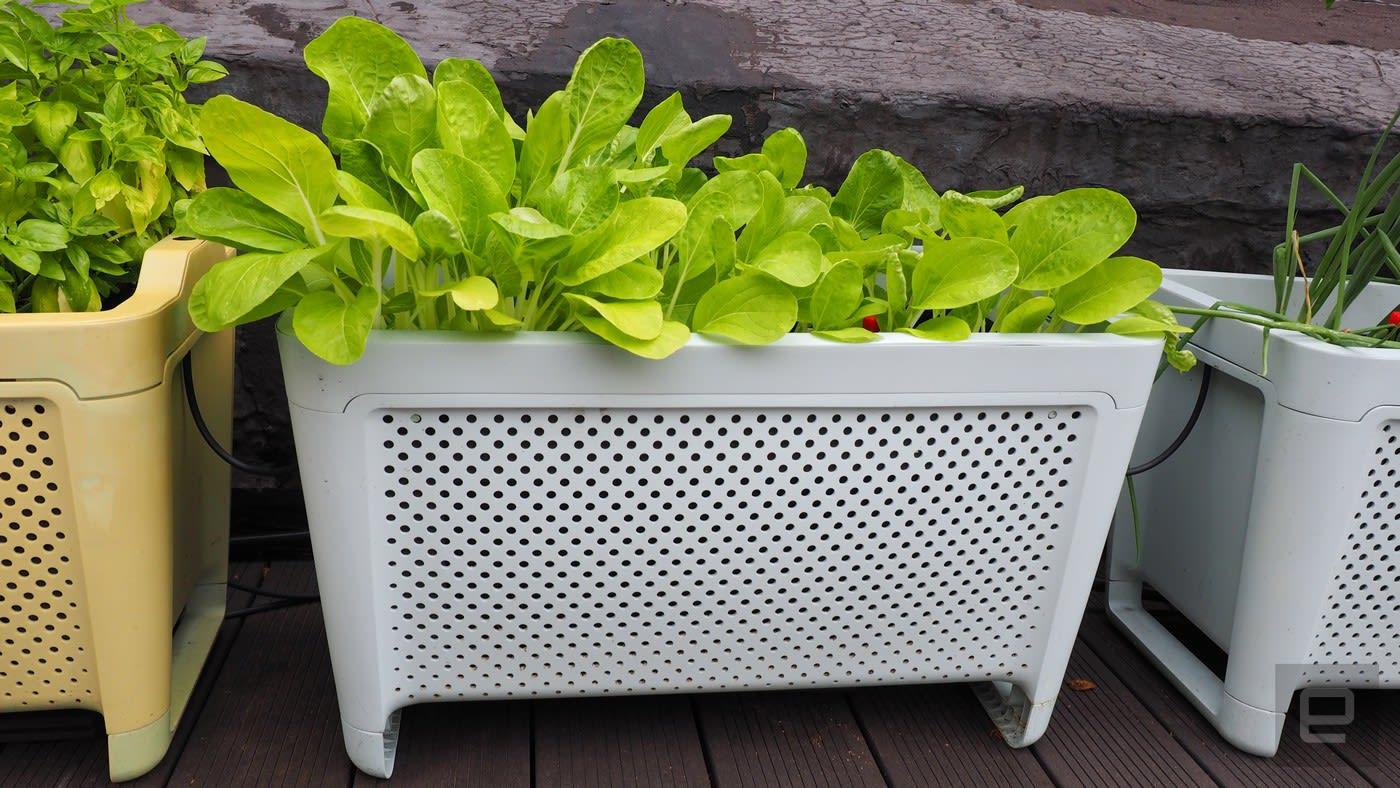El crecimiento conectado maceta es la mejor sin aspavientos jardinería kit - Engadget en español 1
