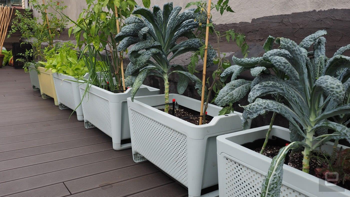 El crecimiento conectado maceta es la mejor sin aspavientos jardinería kit - Engadget en español 2
