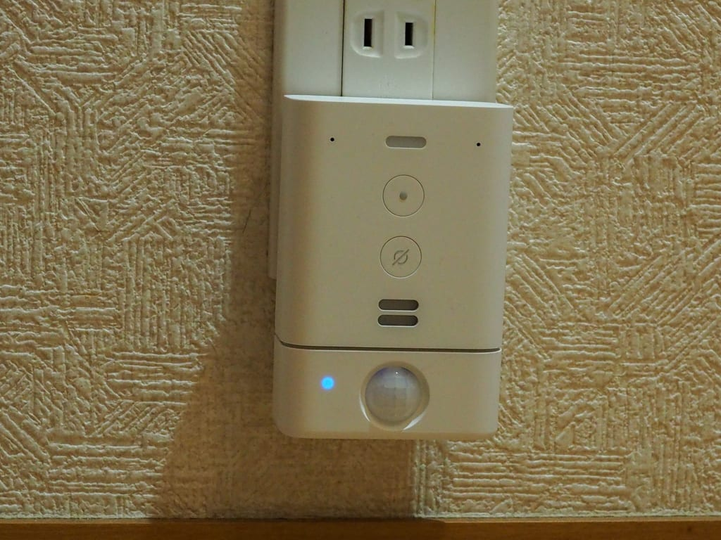 Echo Flex Motion Sensor