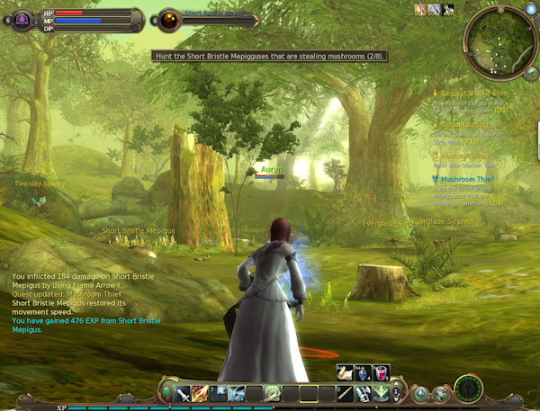 Hands on with the Aion beta: The lore of Atreia