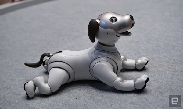 Sony Aibo hands-on: An adorable robo-pup that needs training