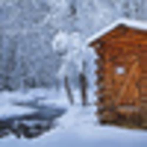 Log outhouse, Chena Hot Springs Resort, Alaska, USA