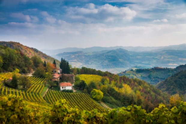 The Langhe country in autumn, Italy
