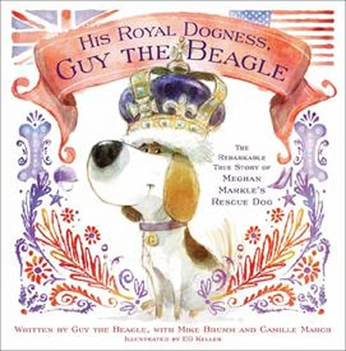 His Royal Dogness, Guy the Beagle