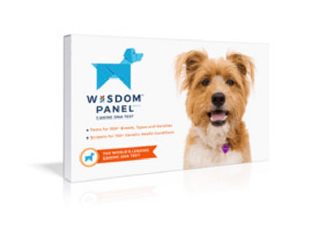 Wisdom Panel Canine DNA Test, Canine Breed + Disease Detection Test
