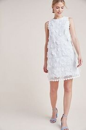 Daisy Lace Shift Dress