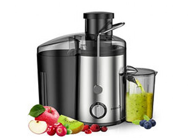 Easehold Dual Speed 600W Juicer
