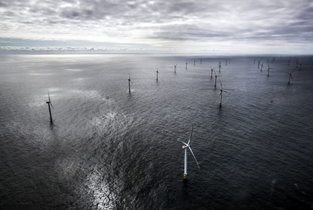 Low carbon power provides half of UK electricity, figures
