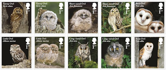royal mail issues new stamps featuring british owls aol