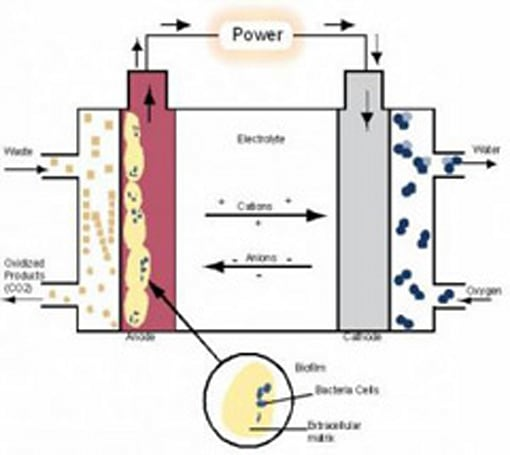 Microbial fuel cell insights bring practical poo power closer to reality