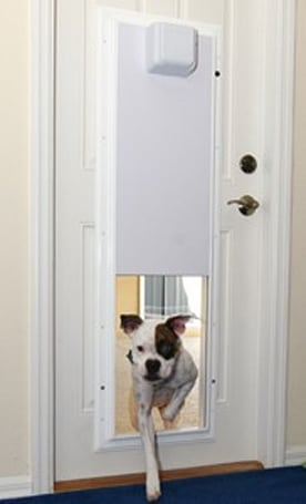 Plexidor's RFID-activated sliding doggie door: it's about time