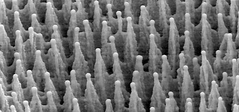 Black silicon is poised to improve digital imaging, maybe solar panels
