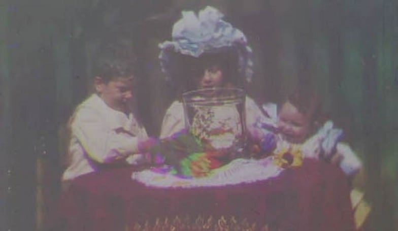 World's oldest color film footage discovered in museum archive (video)
