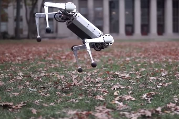 MIT's Mini Cheetah robot knows how to do backflips