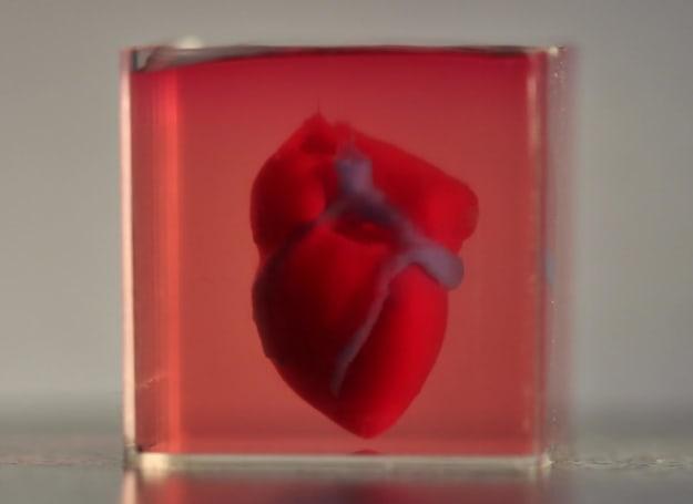 科学家用人体组织 3D 打印出了一颗心脏