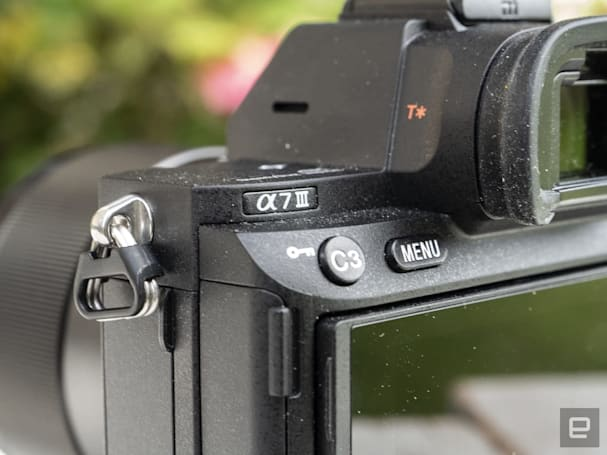 Sony A7 III 和 A7R III 新增動物眼部對焦功能