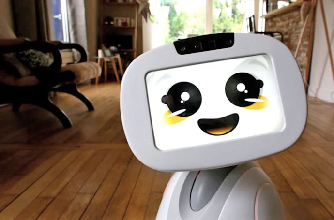 Creators of social robot Buddy need more money to finally launch