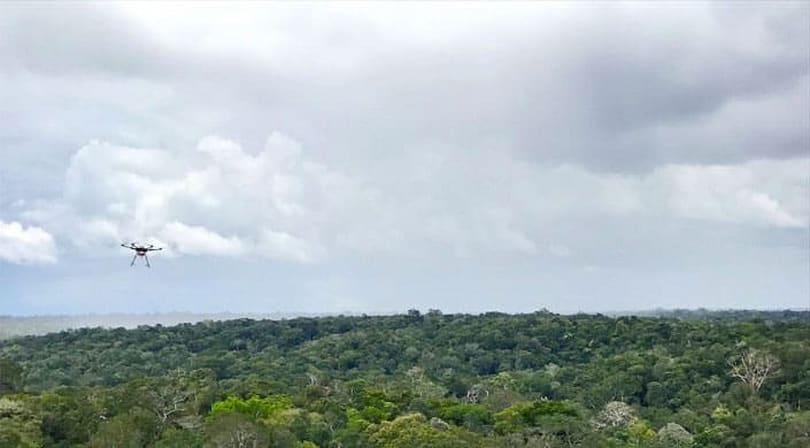 Researchers are using drones to study the Amazon rainforest's health