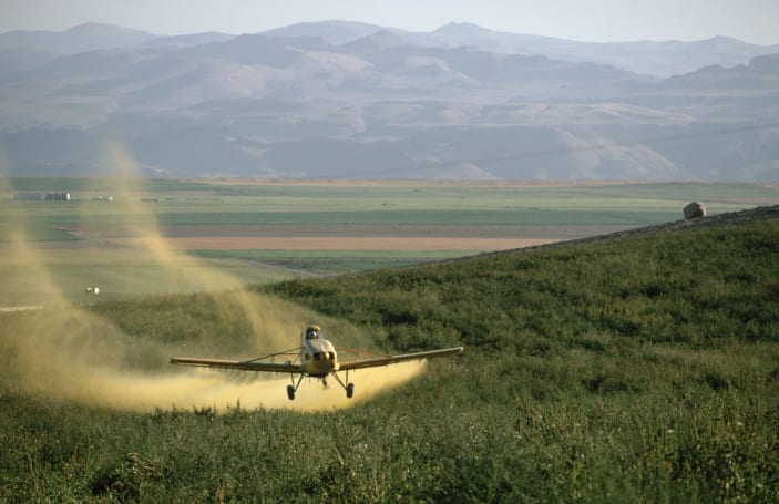 Crop spray gives plants GMO benefits without altering genes