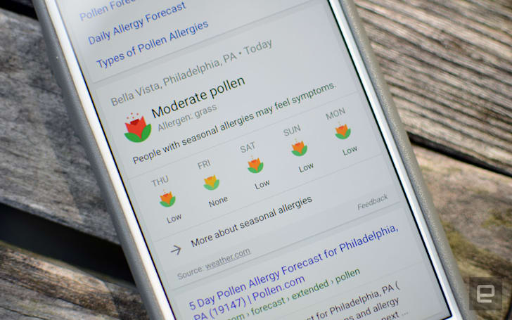 Google adds allergy forecast info to mobile search results