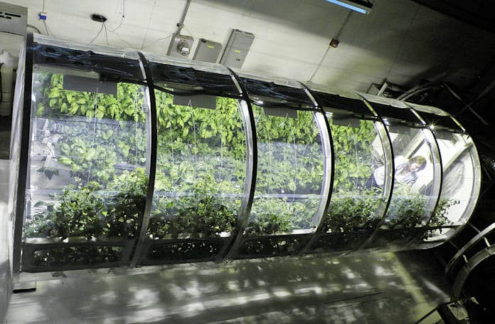 NASA's inflatable greenhouse could feed astronauts on Mars