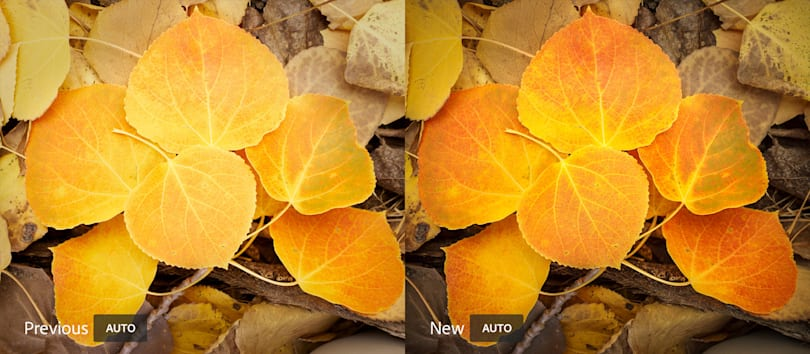 Adobe Lightroom uses AI to edit your photos like a pro